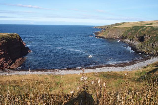 The coast at Aberdour