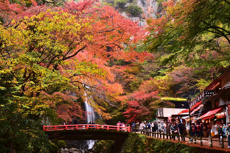 箕面公園 Minoo Park Osaka