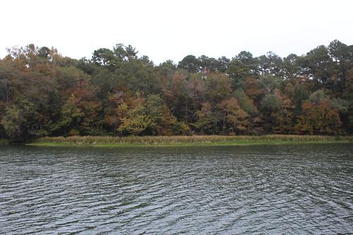 facevillelandingpark park bainbridge georgia lakeseminole