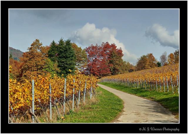 Strolling around @ Baden-Baden 61