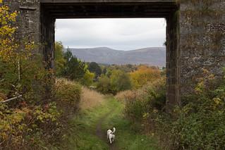 2015-10-scotland-2.jpg   by anywhereism