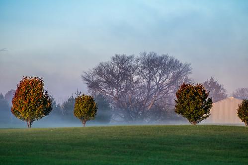 fog sunrise marion