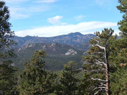 Custer State Park - 1