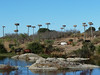 Natural Monument Los Barruecos, foto: Petr Nejedlý