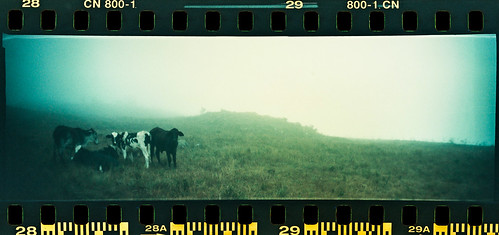 Sprocket Rocket-4 | by eusouorocha