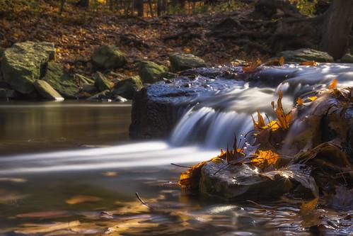 autumnstuff hamilton leaves redhillvalley ontario canada ca img8642e canon6d hfg stream cascade longexposure