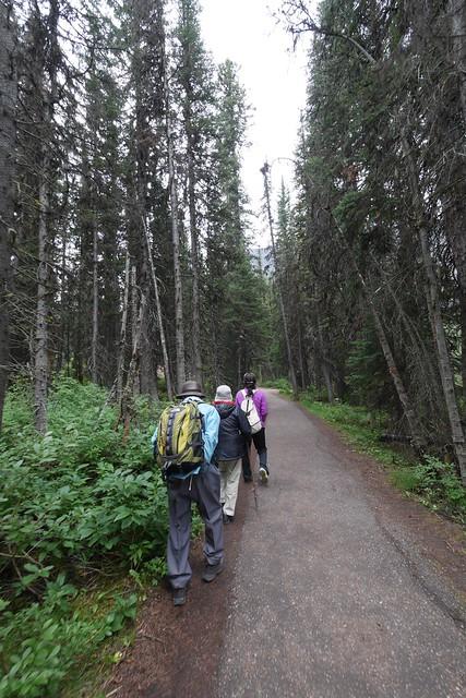 木, 2015-07-23 13:58 - Trail to Fairview Lookout