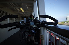 on the ferry to Texel