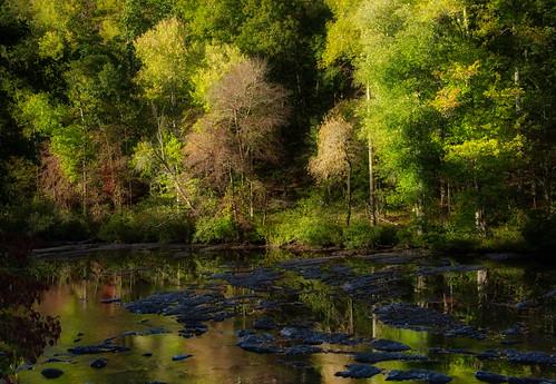 fall river trees autumn rocks tellico cherohala outdoor serene landscape water