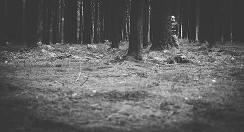 Psycho des Waldes