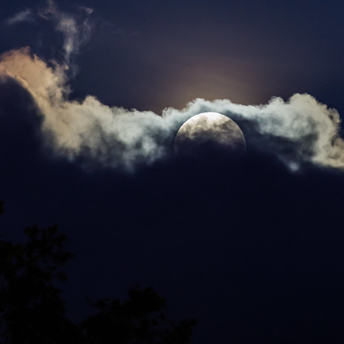 Big Moon Rising | by red snapper 205