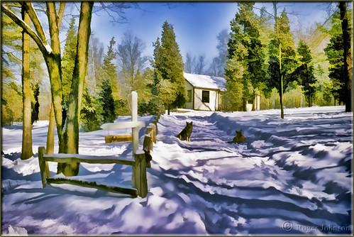 connecticut glastonbury snowscene rogerjohnson sliderssunday