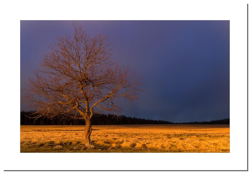 """Alone"" (Haute-Loire/France)"