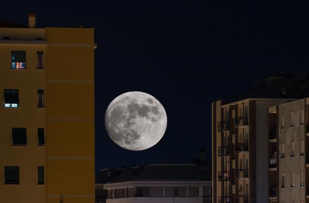 The Moon shall rise again - Supermoon 2016 . 47/52