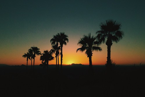 phoenix sunrise dawn hike palm ridge camelback iphone dawnpatrol vsco vscocam