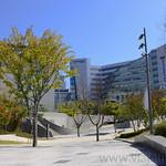 23 Corea del Sur, Dongdaemun   08
