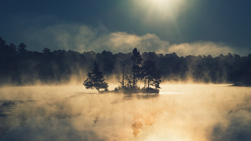 mist fog morning sunrise water lake pond trees island sun outdoor