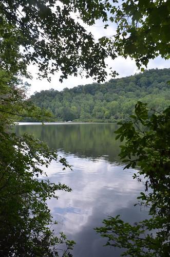 reflection tree water virginia nikon va fairystonestatepark d7000 fairystonepark fairystonelake tamron18270 nikond7000 tamron18270f3563diiivcpzd