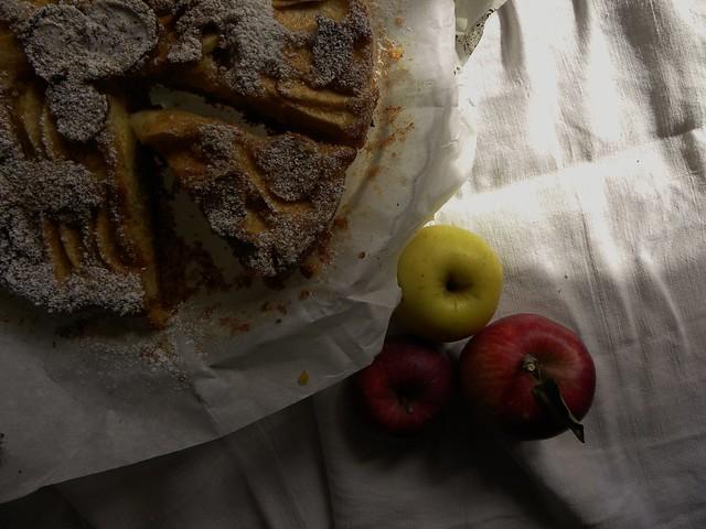torta di mele e miele (3)