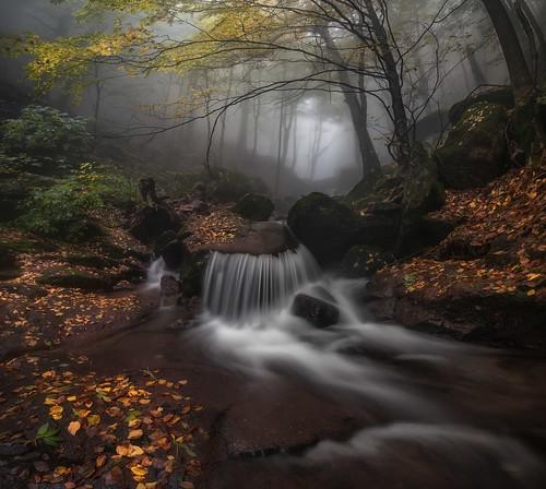 Misty river | by Krasi St Matarov