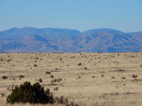 Onderweg naar Albuquerque - 1