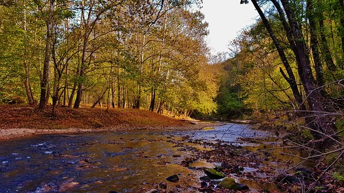 danielsarea daniels howardcounty patapscovalleystatepark patapscorapids patapscostatepark patapsco autumn autumnfoliage autumnscenes august2016 fallfoliage fallscenes fall2016 october october2016 waterscapes forests marylandforests maryland americanforests americanrivers river