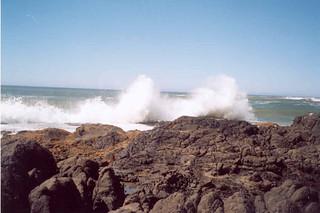 41 Oregon Coast