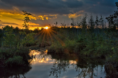sunset landscape us newjersey unitedstates pinelands waterford photograhy louisdallara goshenpond