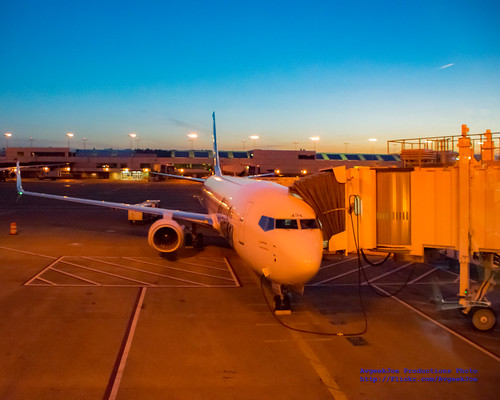 iflyalaska 737990 737990erwl alaskaair alaskaairlines boeing737 boeing737900 boeing737990 boeing737990erwl d5300 dslr jetliners n434as nikon nikond5300 pdx portlandinternationalairport sunrise aircraft airplane aviation jetliner plane