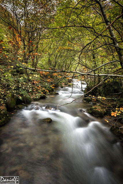 Río Saliencia - Saliencia river