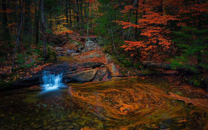 Fall Water and Colors