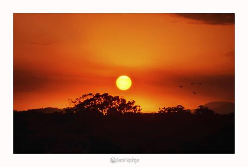 nambuccaheads nambuccascenery nambuccavalley marcelrodrigue jkamidnorthcoast midnorthcoast newsouthwales nsw australia photography nature sunset nambucca