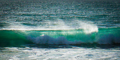 The Wave   by judy dean