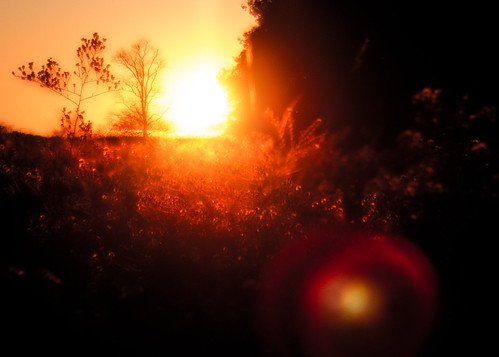 autumn sunset red landscape outdoors colorful dreamlike
