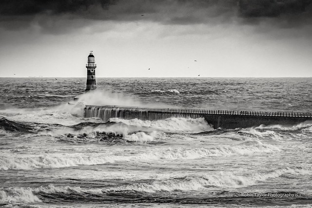 Roker Pier And Lighthouse Mono