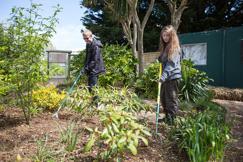 Landscape Gardener