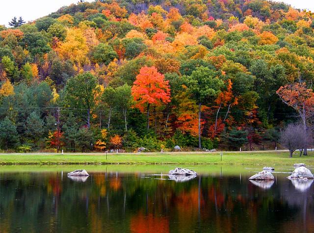 Reflecting Fall Landscape