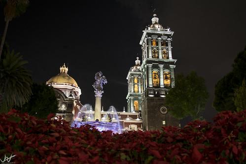 Catedral en navidad
