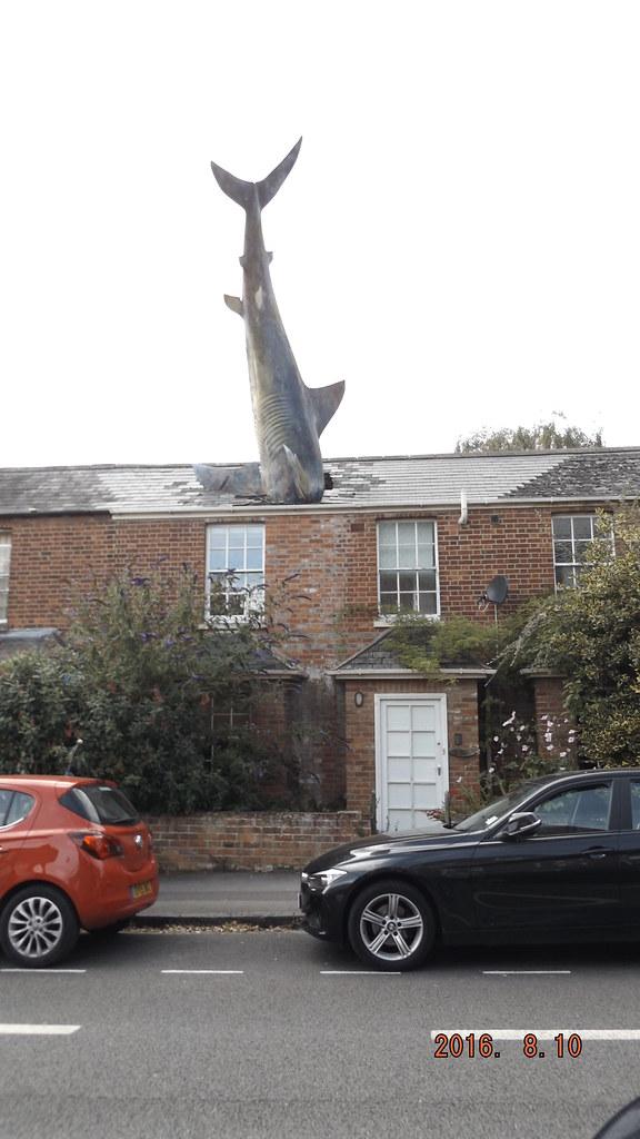 Bill Heine S Shark In Headington Oxford England The