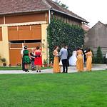 Eine Hochzeitsgesellschaft Ende August beim Fotoshooting vor der grünen Wand am Hambar