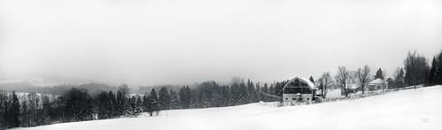 winter blackandwhite snow monochrome photoshop noiretblanc neige lightroom winterlandscape autopano paysagedhiver nikkor2470mm paysagequébécois nikond800e wacomintuospro