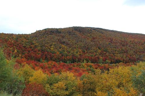 fall landscape vt us usa unitedstates vermont foliage licensed shutterstock shutter