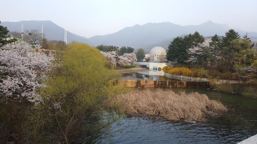 Nguyen, Anna; South Korea - Episode 12 (7)
