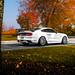 White Mustang GT on Velgen Wheels VMB9 Matte Silver 20x9 & 20x10.5 by VelgenWheels