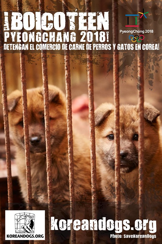 Boycott Pyeongchang_Spanish_1440x2160_p_sp