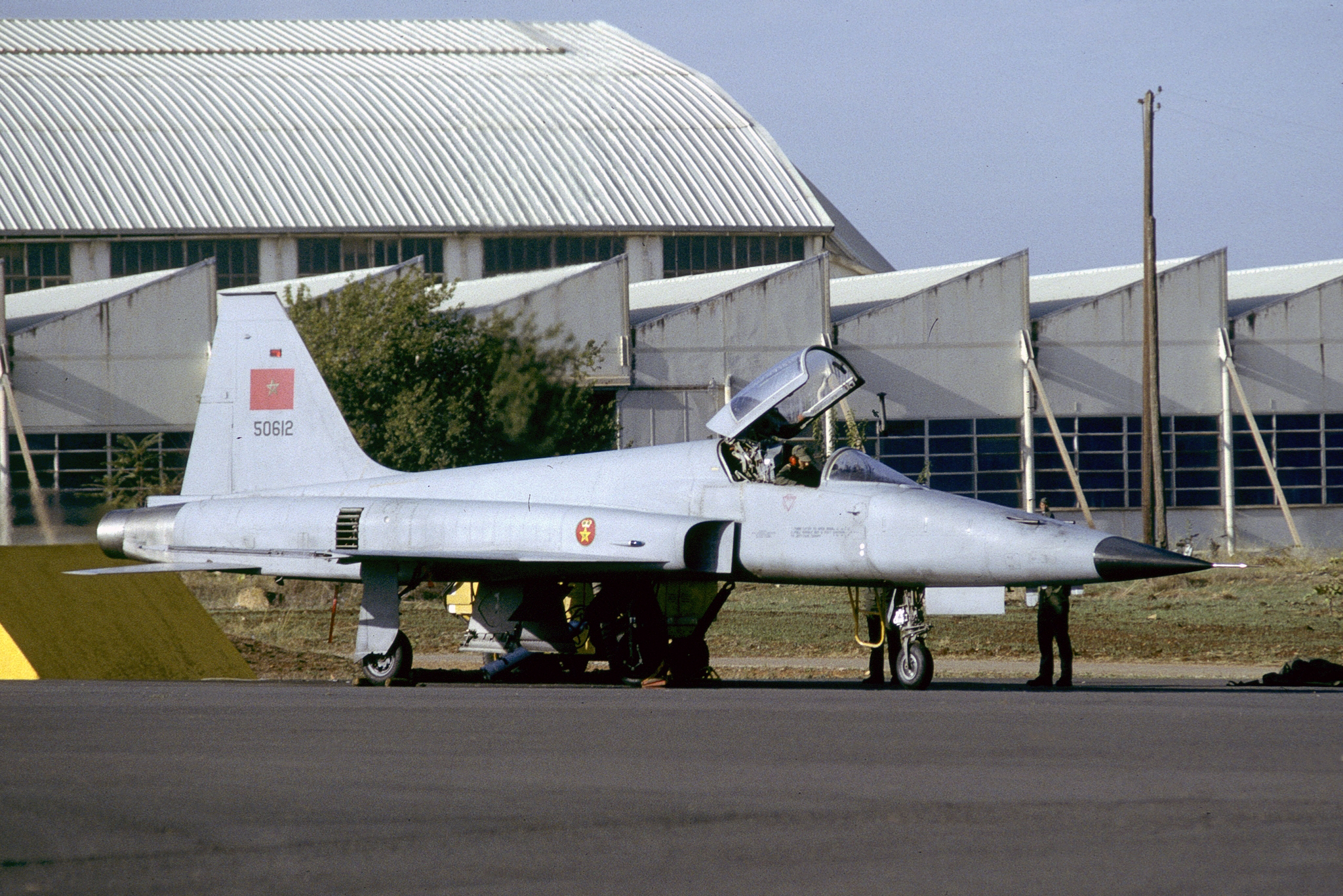 F-5A/B/E et F des FRA / RMAF Northrop F-5 Tiger III - Page 21 30519957894_6e0f33977e_o_d