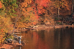 Fall Colors at Loch Raven