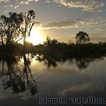 02 Viajefilos en Australia, Kakadu NP 106