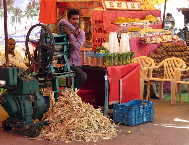 sugarcane, deshnoke
