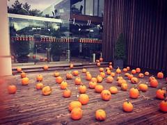 A lot off #pumpkins - #halloween #decorations in #kaunas @ #piliessodas